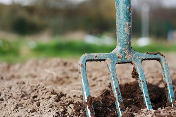 Forks & Rakes & Hoes