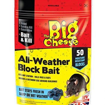 50 all weather block bait
