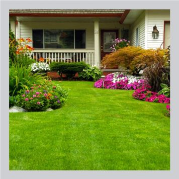 Lawn Care, Plant Food & Compost